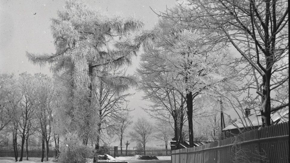 Plzeň-Lochotín, zimní partie