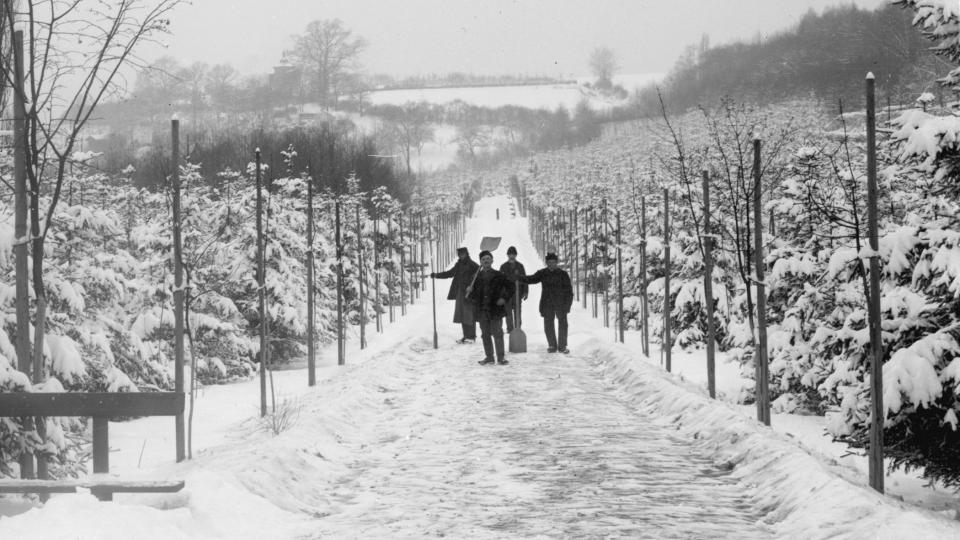 Plzeň-Lochotín, dolejší cesta v zimě