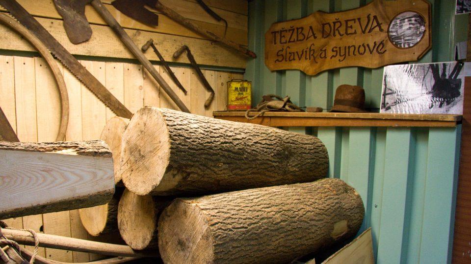 Špalky jasanového dřeva jako výchozí surovina pro výrobu lyží