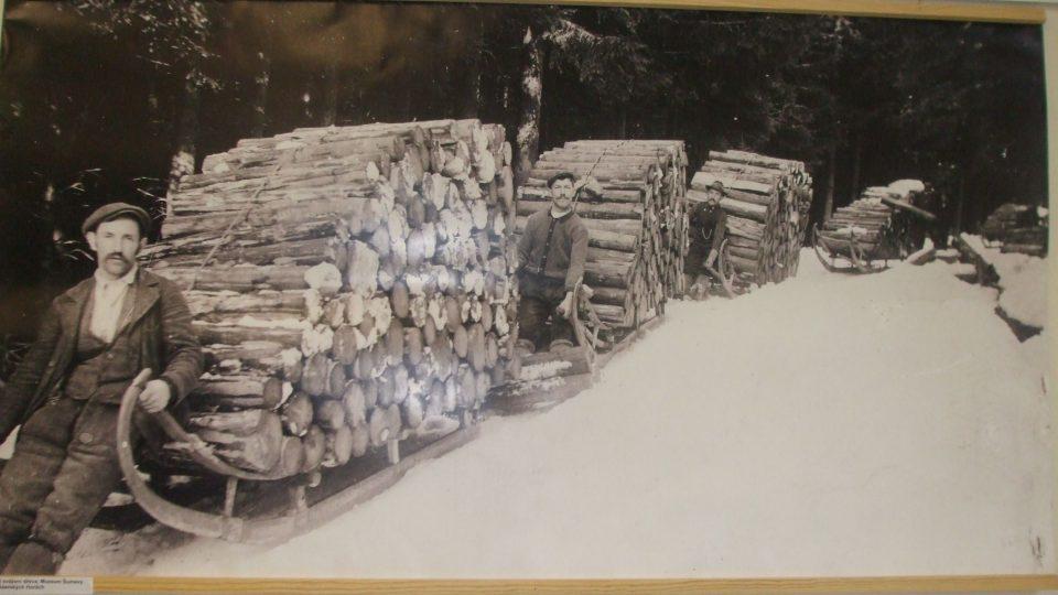 Svážení dřeva