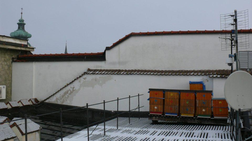 Čtrnáct včelstev obývá střechu radnice