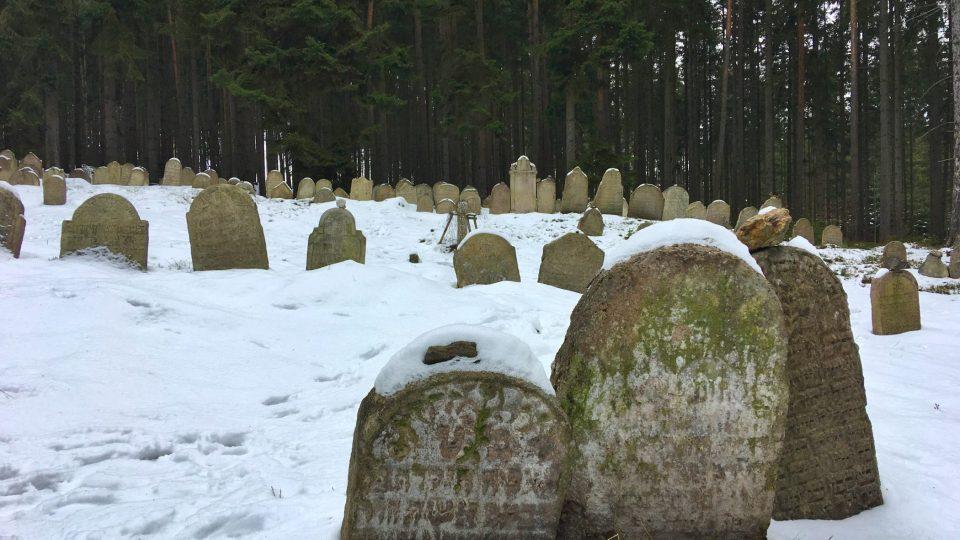 Venkovský židovský hřbitůvek u Drmoulu na Chebsku