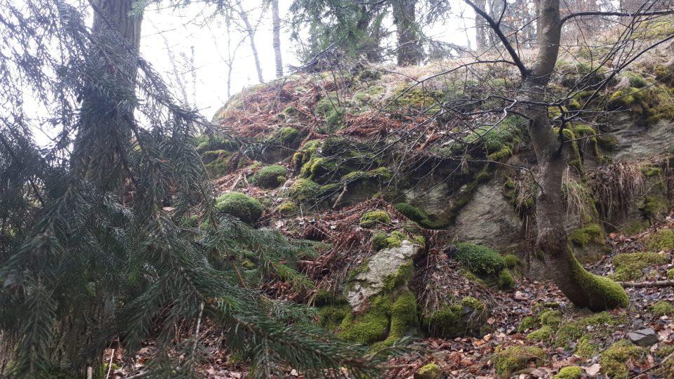 Kupsova skála je bývalý lom blanické pararuly