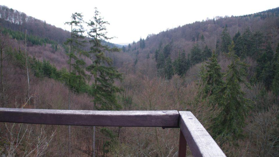 Pohled z vrcholu Zkamenělého zámku do údolí Špraňku, které za miliony let pokleslo o více než 60 metrů