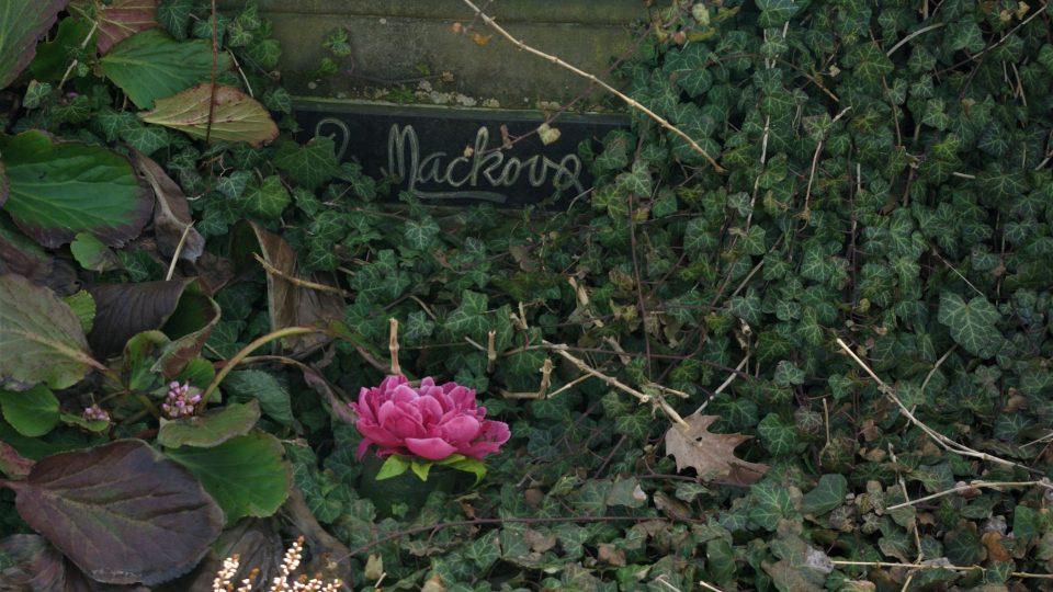 Hrob Anny Mackové na hřbitově v Radimi