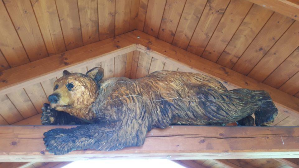Medvěd našel originální umístění. Odpočívá na trámu dřevěného altánku