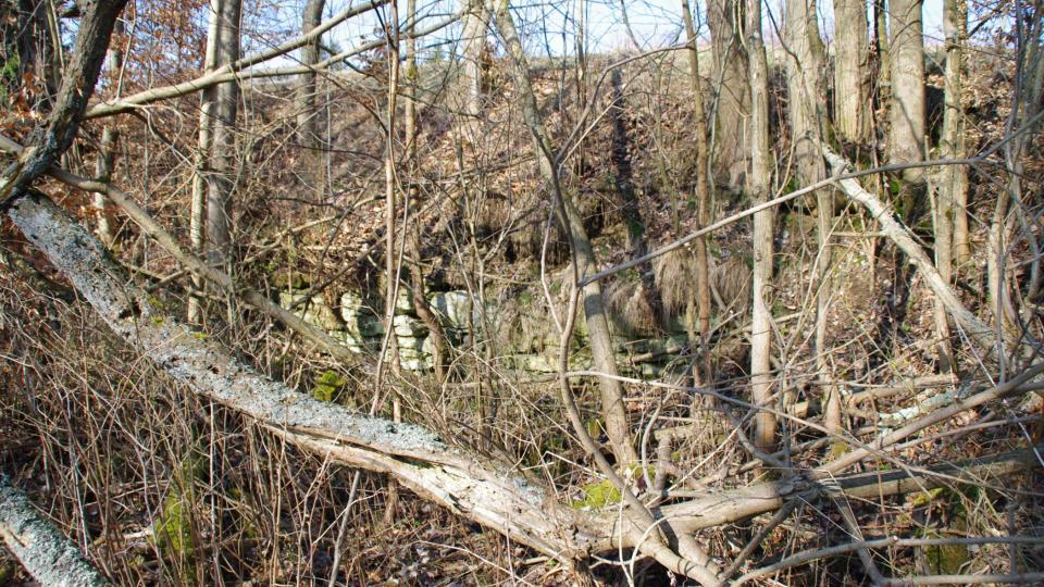 Zbytky základů už mizí ve vegetaci