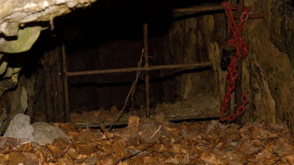 Štola je domovem netýpýrů a vrápenců, jejich klid zajišťuje mříž