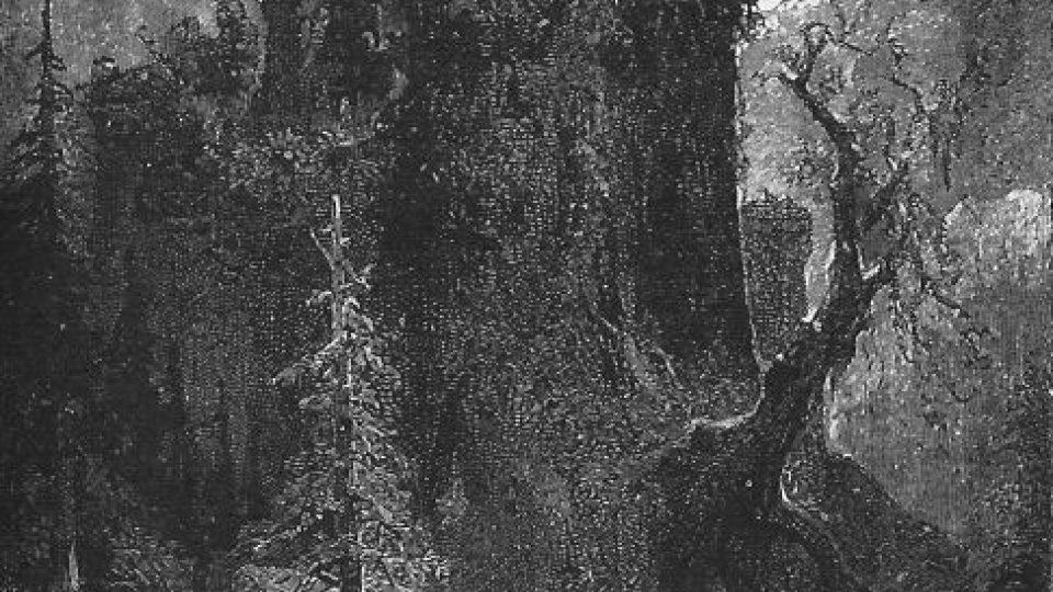 Původní ilustrace k románu Tajemný hrad v Kapratech