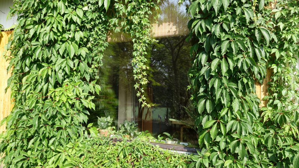 Vlastní dům Alvara Aalto, Helsinky