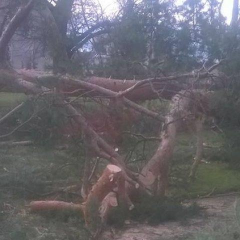 Vítr poškodil park v Holešově