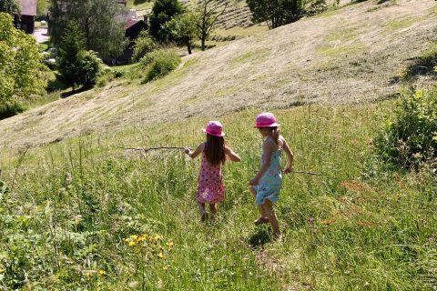 Děti, dívky, louka, pole, příroda