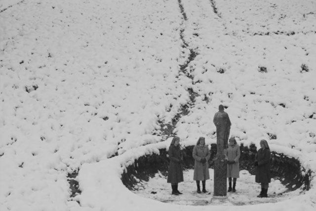 Do českých kin i do distribuce na internetu vstoupil polský film Ida