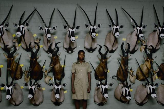 Z filmu Safari Ulricha Seidla