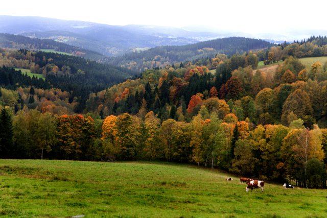 Šumava, podzim (ilustrační foto)