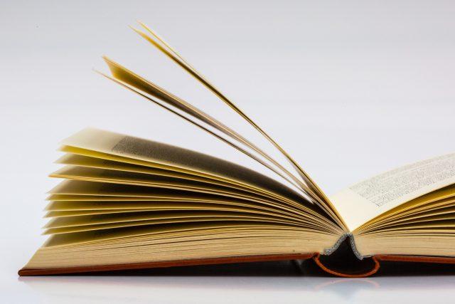 Literatura je součástí našich životů  (ilustrační foto) | foto: Fotobanka Pixabay