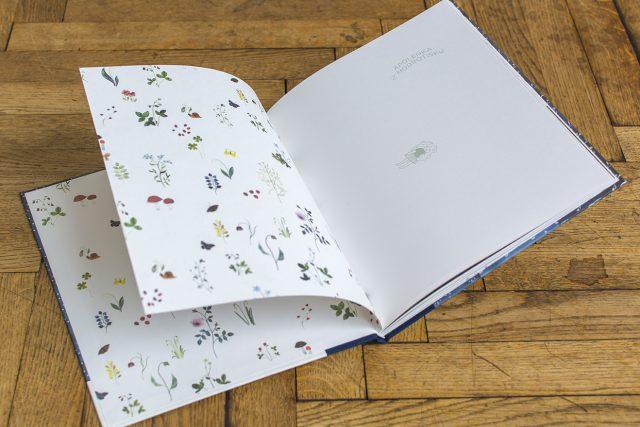 Ilustrace z dětské knížky Apolenka z modrotisku | foto: Romana Košutková