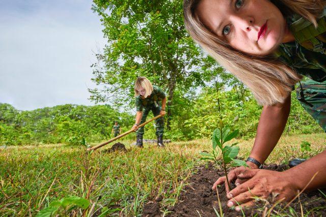 Buchty na téma zahradničení