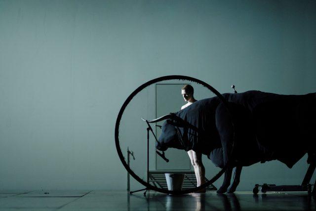 Z inscenace Transverse Orientation řeckého choreografa Dimitrise Papaioannou