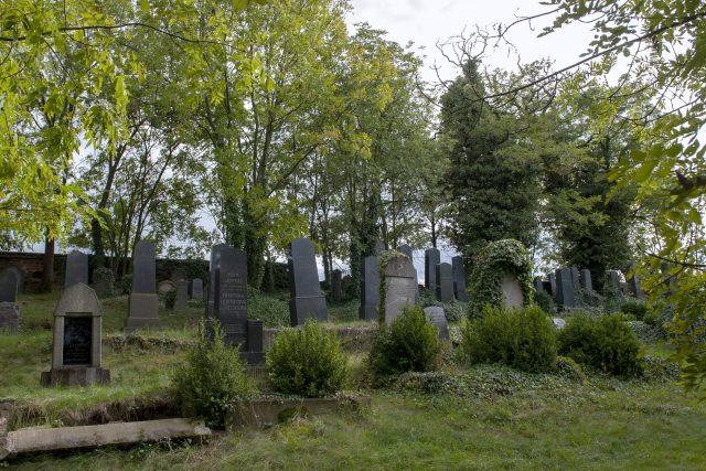 Praskolesy – židovský hřbitov | foto: Monika Žitníková