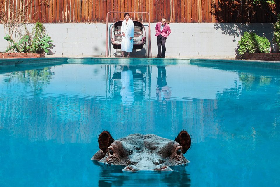 Sparks – Hippopotamus