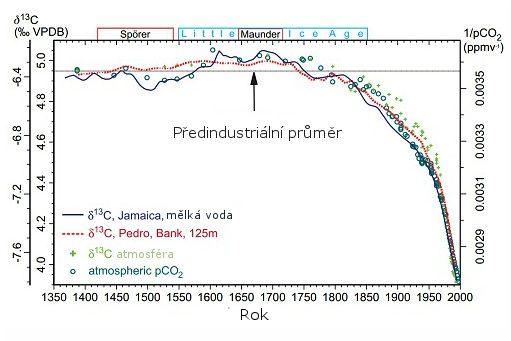 radiokarbonové organické materiály